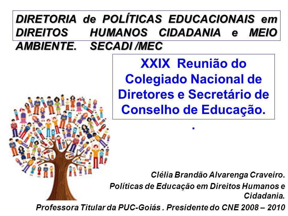 Clélia Brandão Alvarenga Craveiro. Diretora de Políticas de Educação em Direitos Humanos e Cidadania. Professora Titular da PUC-Goiás. Presidente do C