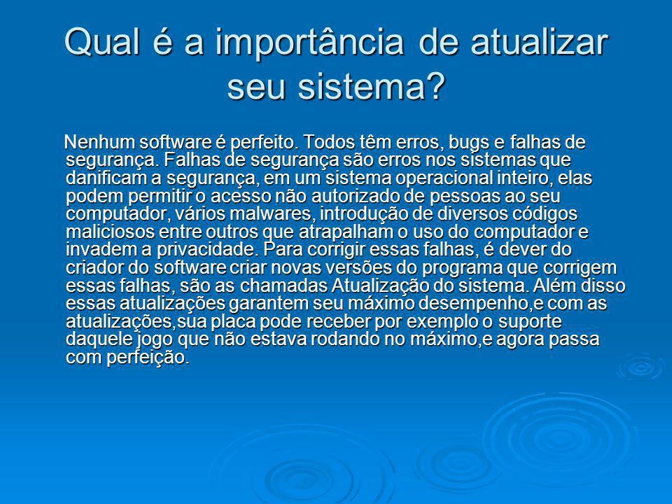 Qual é a importância de atualizar seu sistema? Nenhum software é perfeito. Todos têm erros, bugs e falhas de segurança. Falhas de segurança são erros