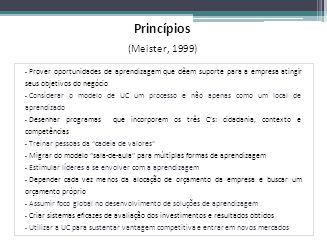 Princípios (Meister, 1999) – Prover oportunidades de aprendizagem que dêem suporte para a empresa atingir seus objetivos do negócio – Considerar o mod