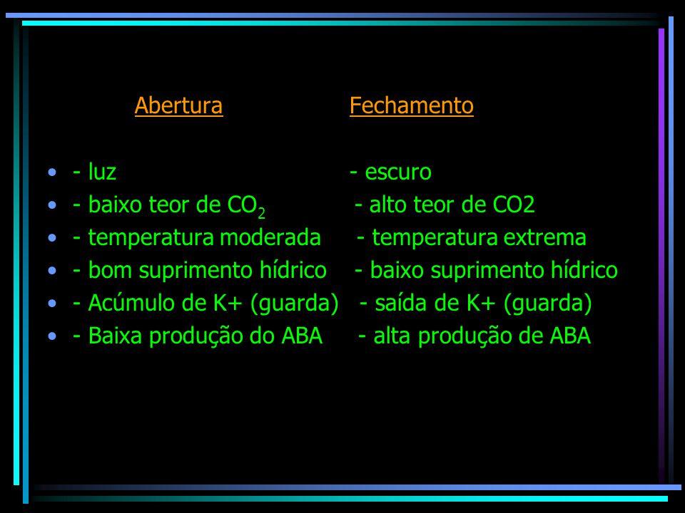 Demonstração experimental da transpiração Método do papel cobalto Método do saco plástico Método do potômetro Pesagem em balança analítica (rápida)