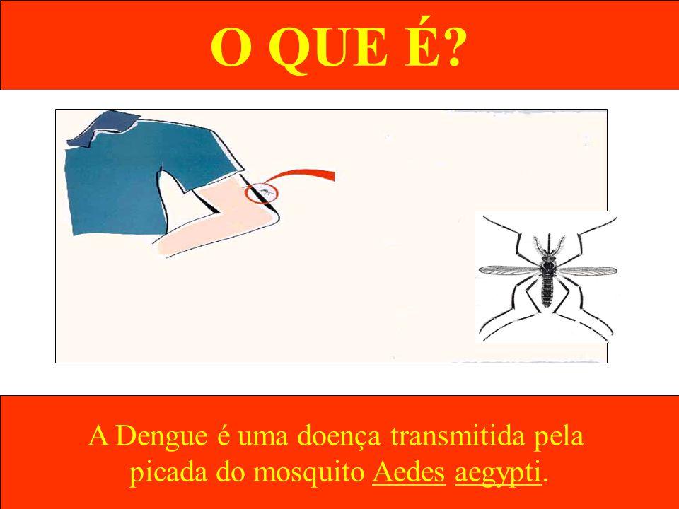 O QUE É? A Dengue é uma doença transmitida pela picada do mosquito Aedes aegypti.