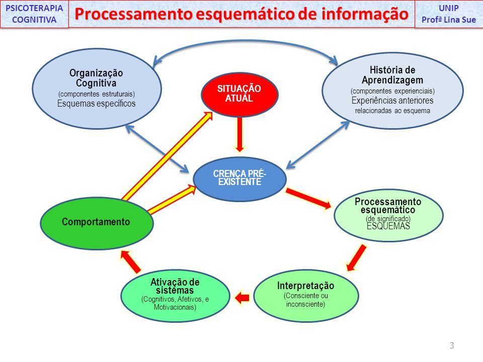 3 UNIP Profª Lina Sue UNIP Profª Lina Sue PSICOTERAPIA COGNITIVA Processamento esquemático de informação CRENÇA PRÉ- EXISTENTE Processamento esquemáti