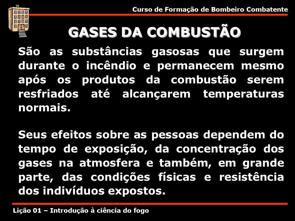 Curso de Formação de Bombeiro Combatente Lição 01 – Introdução à ciência do fogo GASES DA COMBUSTÃO São as substâncias gasosas que surgem durante o in