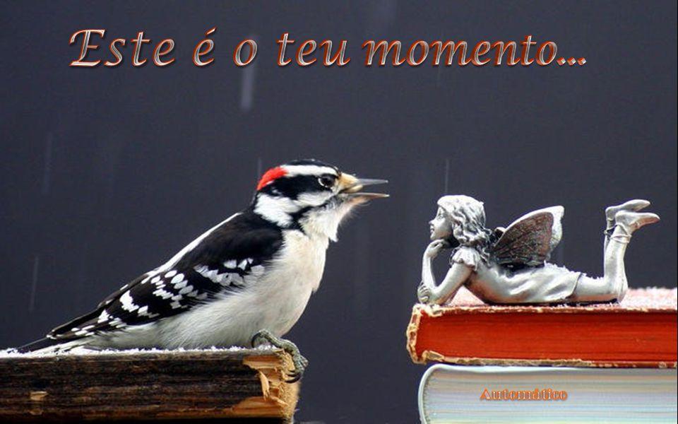O momento atual é a vida, que resulta das atividades pretéritas e elabora o programa do porvir.