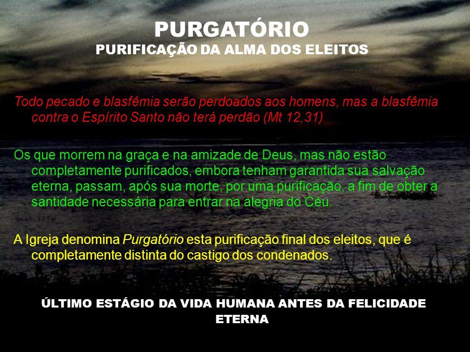 PURGATÓRIO PURIFICAÇÃO DA ALMA DOS ELEITOS Todo pecado e blasfêmia serão perdoados aos homens, mas a blasfêmia contra o Espírito Santo não terá perdão