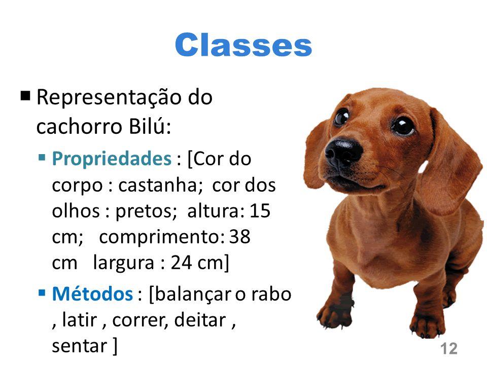 Classes  Representação do cachorro Bilú:  Propriedades : [Cor do corpo : castanha; cor dos olhos : pretos; altura: 15 cm; comprimento: 38 cm largura : 24 cm]  Métodos : [balançar o rabo, latir, correr, deitar, sentar ] 12