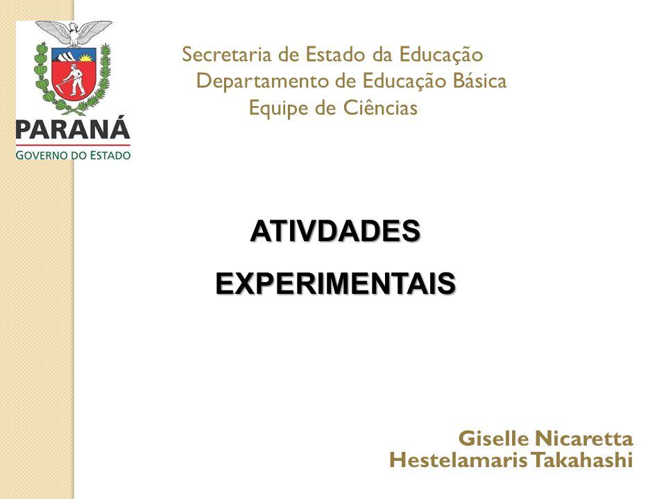 Secretaria de Estado da Educação Departamento de Educação Básica Equipe de Ciências ATIVDADES EXPERIMENTAIS Giselle Nicaretta Hestelamaris Takahashi