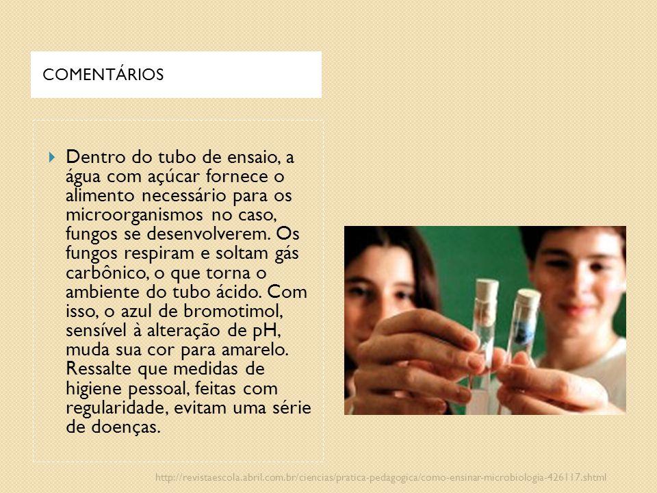 COMENTÁRIOS  Dentro do tubo de ensaio, a água com açúcar fornece o alimento necessário para os microorganismos no caso, fungos se desenvolverem. Os f