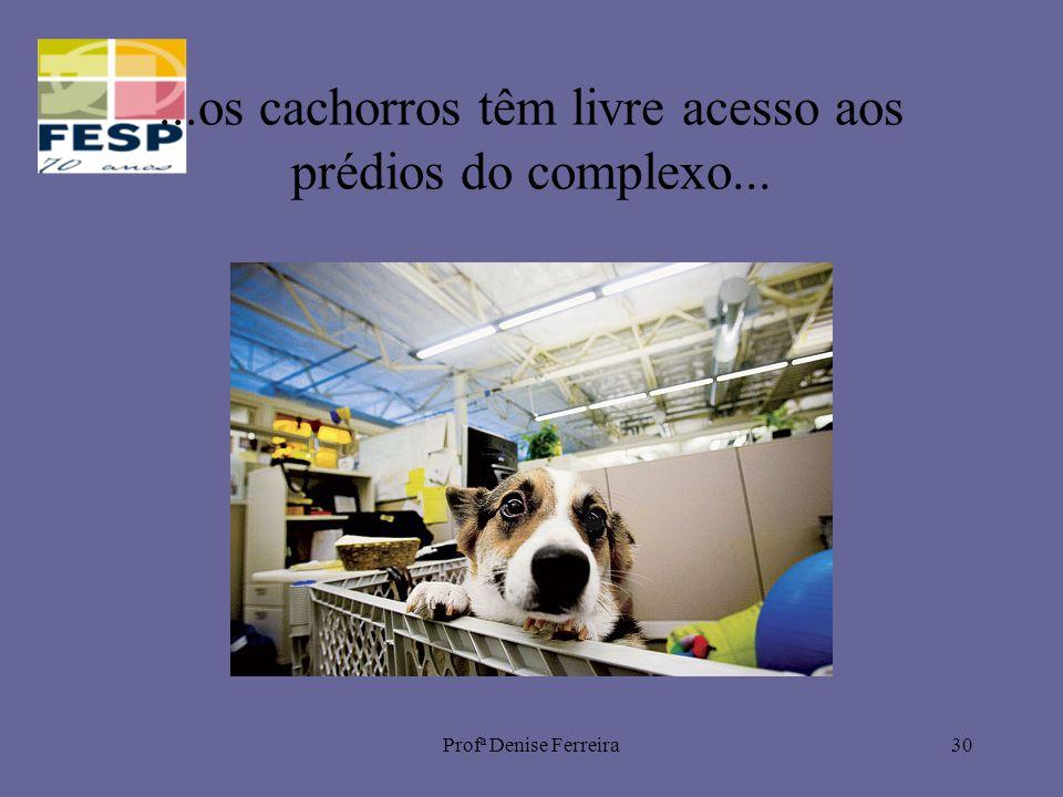 Profª Denise Ferreira30...os cachorros têm livre acesso aos prédios do complexo...