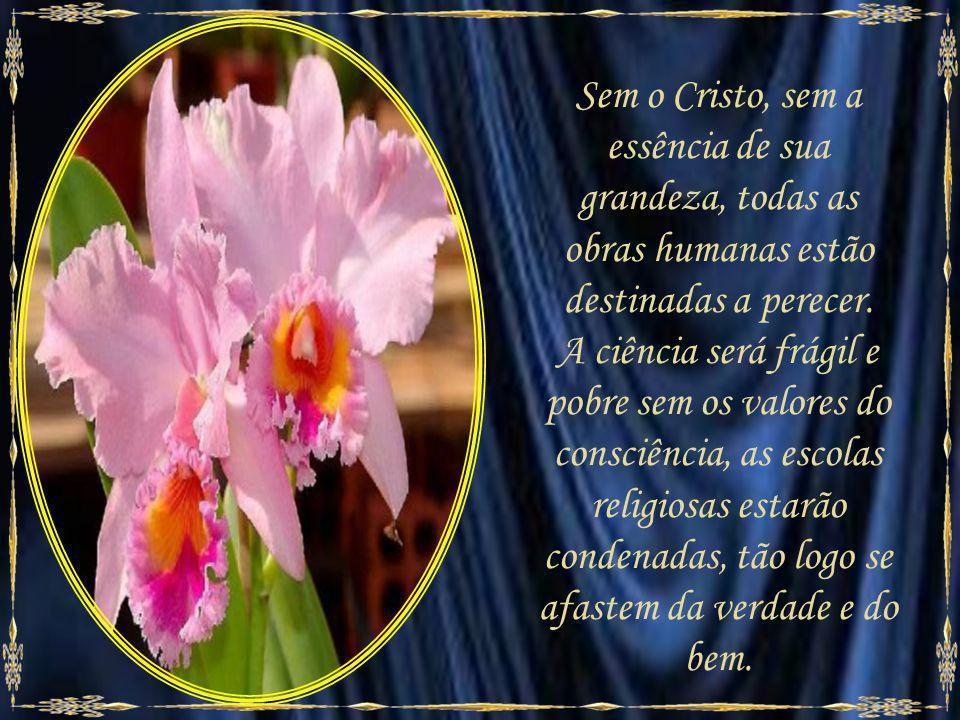 ¨Eu sou a videira, vós as varas.¨- Jesus. (João, 15:5.) Jesus é o bem e o amor do princípio. Todas as noções generosas da Humanidade nasceram de sua d