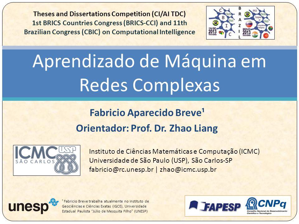 Fabricio Aparecido Breve¹ Orientador: Prof. Dr.