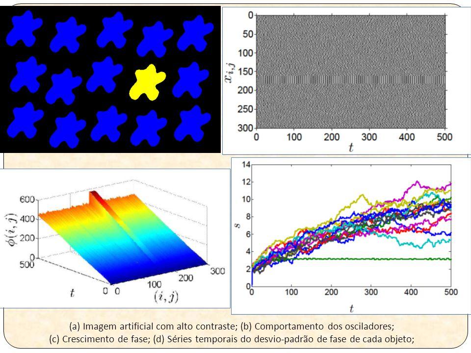 (a) Imagem artificial com alto contraste; (b) Comportamento dos osciladores; (c) Crescimento de fase; (d) Séries temporais do desvio-padrão de fase de cada objeto;