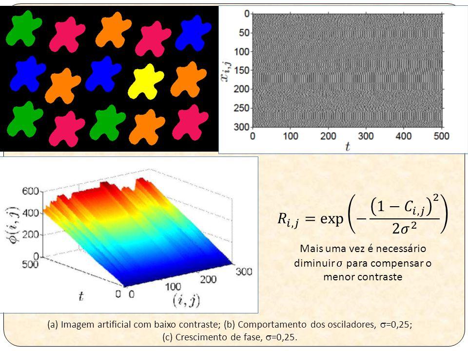 (a) Imagem artificial com baixo contraste; (b) Comportamento dos osciladores,  =0,25; (c) Crescimento de fase,  =0,25.