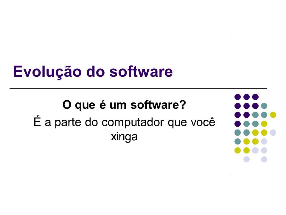 Evolução do software O que é um software? É a parte do computador que você xinga