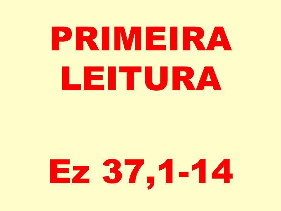 PRIMEIRA LEITURA Ez 37,1-14