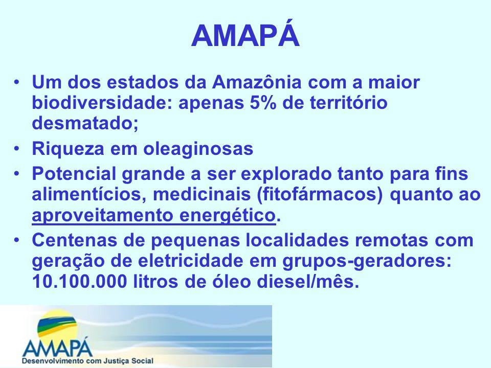 AMAPÁ Um dos estados da Amazônia com a maior biodiversidade: apenas 5% de território desmatado; Riqueza em oleaginosas Potencial grande a ser explorado tanto para fins alimentícios, medicinais (fitofármacos) quanto ao aproveitamento energético.