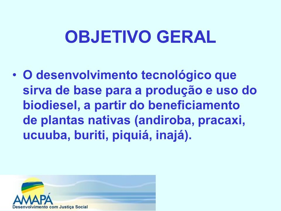 OBJETIVO GERAL O desenvolvimento tecnológico que sirva de base para a produção e uso do biodiesel, a partir do beneficiamento de plantas nativas (andiroba, pracaxi, ucuuba, buriti, piquiá, inajá).