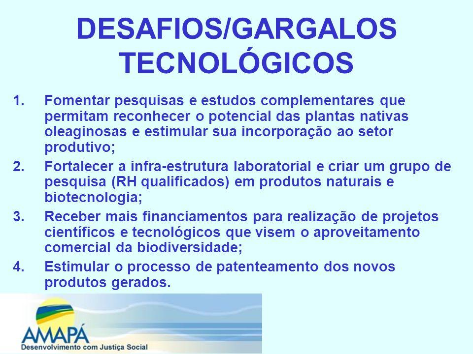 DESAFIOS/GARGALOS TECNOLÓGICOS 1.Fomentar pesquisas e estudos complementares que permitam reconhecer o potencial das plantas nativas oleaginosas e estimular sua incorporação ao setor produtivo; 2.Fortalecer a infra-estrutura laboratorial e criar um grupo de pesquisa (RH qualificados) em produtos naturais e biotecnologia; 3.Receber mais financiamentos para realização de projetos científicos e tecnológicos que visem o aproveitamento comercial da biodiversidade; 4.Estimular o processo de patenteamento dos novos produtos gerados.
