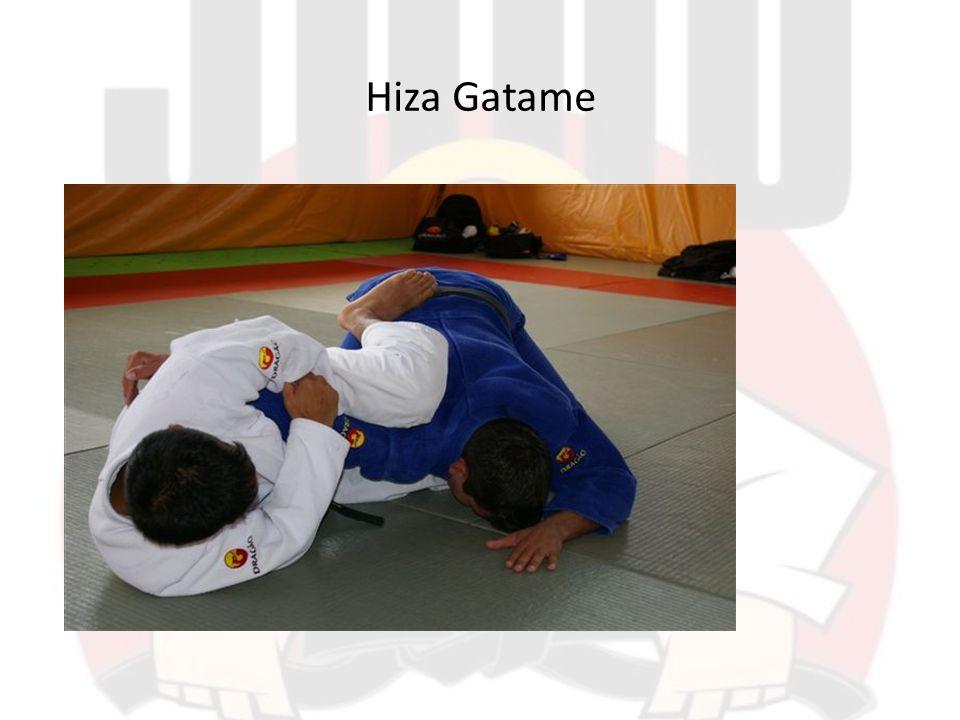 Hiza Gatame