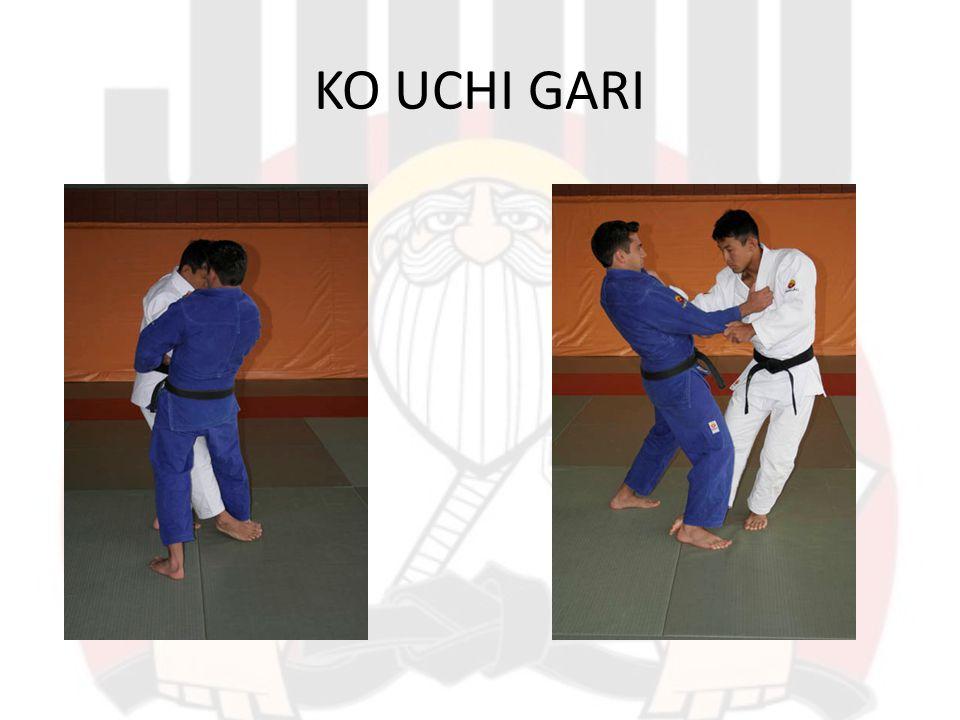 KOSHI GURUMA