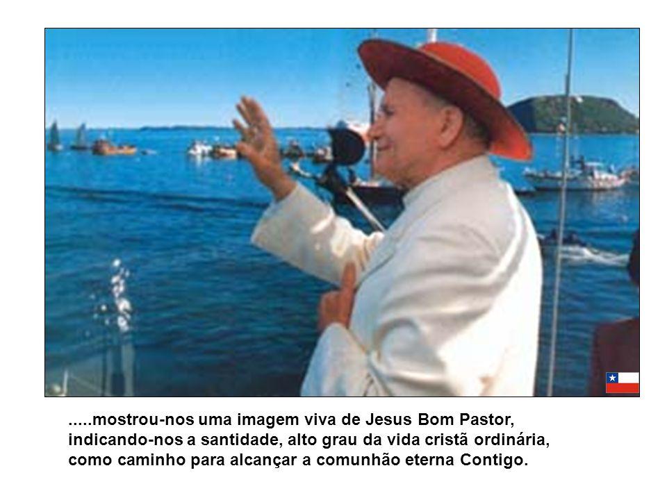 .....mostrou-nos uma imagem viva de Jesus Bom Pastor, indicando-nos a santidade, alto grau da vida cristã ordinária, como caminho para alcançar a comu