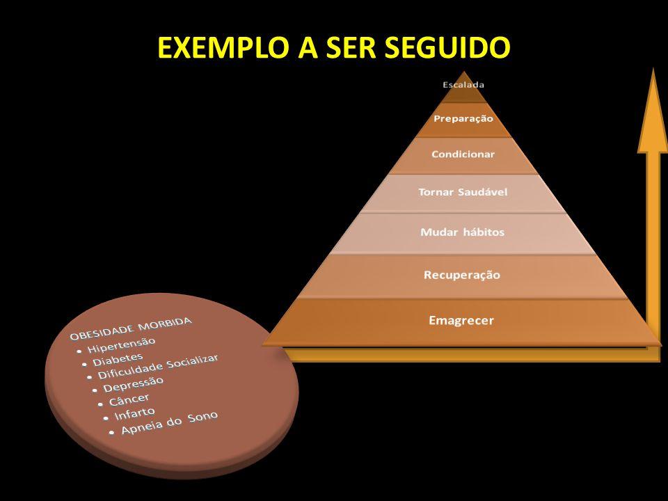 EXEMPLO A SER SEGUIDO