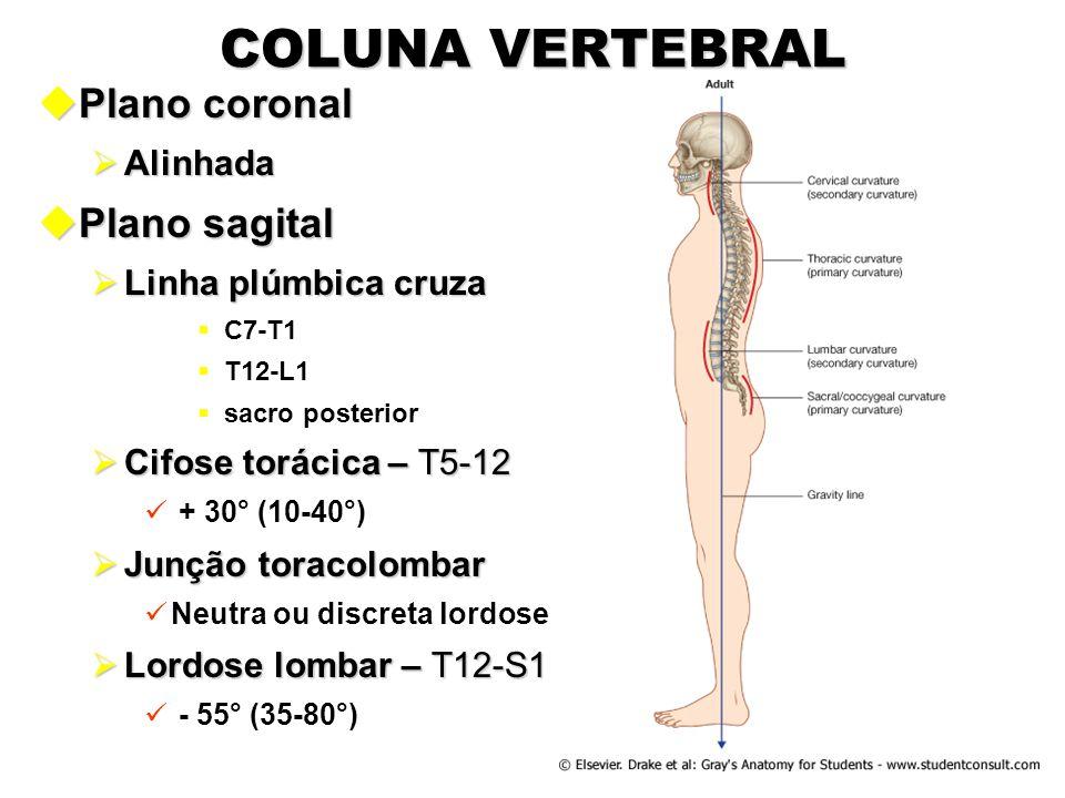 COLUNA VERTEBRAL uPlano coronal  Alinhada uPlano sagital  Linha plúmbica cruza  C7-T1  T12-L1  sacro posterior  Cifose torácica – T5-12 + 30° (1
