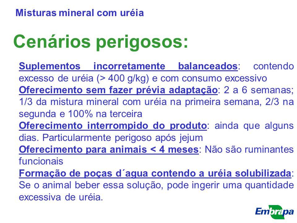 Cenários perigosos: Misturas mineral com uréia Suplementos incorretamente balanceados: contendo excesso de uréia (> 400 g/kg) e com consumo excessivo