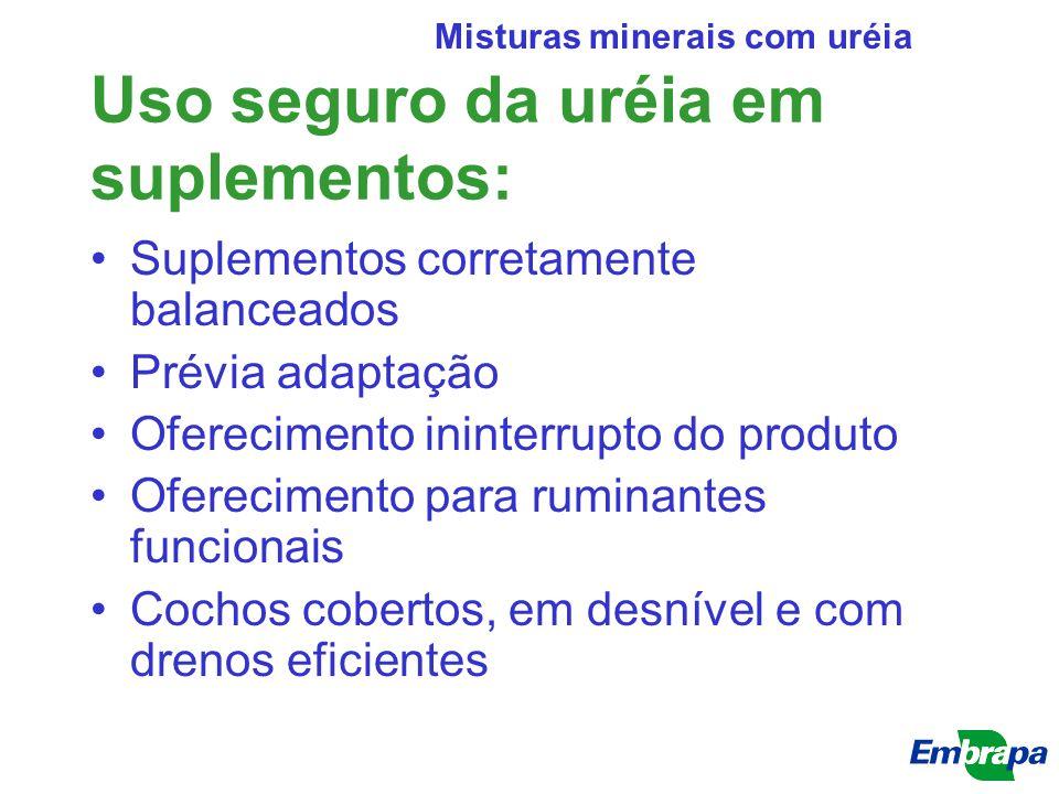 Uso seguro da uréia em suplementos: Suplementos corretamente balanceados Prévia adaptação Oferecimento ininterrupto do produto Oferecimento para rumin