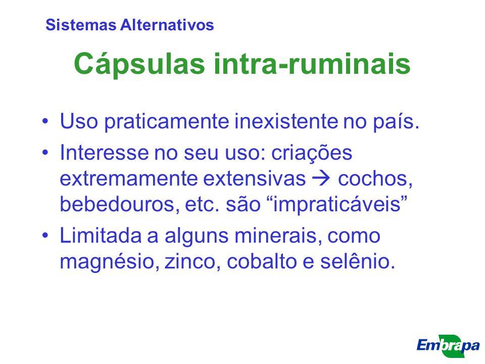 """Cápsulas intra-ruminais Uso praticamente inexistente no país. Interesse no seu uso: criações extremamente extensivas  cochos, bebedouros, etc. são """"i"""