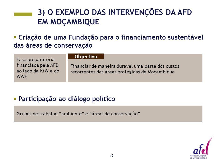 """12  Participação ao diálogo político Grupos de trabalho """"ambiente"""" e """"áreas de conservação""""  Criação de uma Fundação para o financiamento sustentáve"""