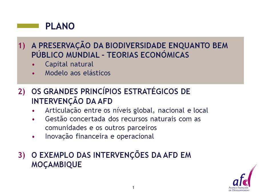 PLANO 1)A PRESERVAÇÃO DA BIODIVERSIDADE ENQUANTO BEM PÚBLICO MUNDIAL – TEORIAS ECONÓMICAS Capital natural Modelo aos elásticos 2)OS GRANDES PRINCÍPIOS ESTRATÉGICOS DE INTERVENÇÃO DA AFD Articulação entre os níveis global, nacional e local Gestão concertada dos recursos naturais com as comunidades e os outros parceiros Inovação financeira e operacional 3)O EXEMPLO DAS INTERVENÇÕES DA AFD EM MOÇAMBIQUE 1