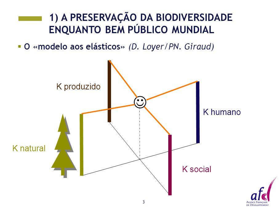 3  O «modelo aos elásticos» (D. Loyer/PN. Giraud) K social K humano K natural K produzido 1) A PRESERVAÇÃO DA BIODIVERSIDADE ENQUANTO BEM PÚBLICO MUN