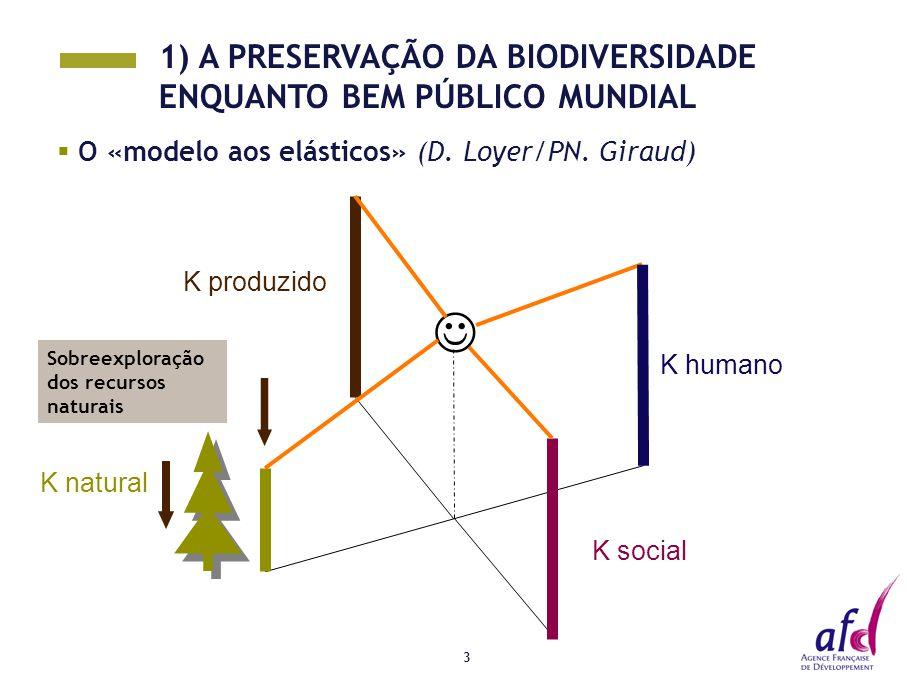 3  O «modelo aos elásticos» (D. Loyer/PN. Giraud) K social K natural K produzido K humano Sobreexploração dos recursos naturais 1) A PRESERVAÇÃO DA B