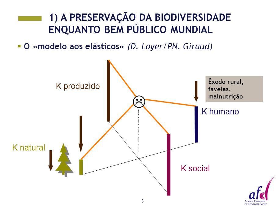 3  O «modelo aos elásticos» (D. Loyer/PN. Giraud) K social K natural K produzido K humano  Êxodo rural, favelas, malnutrição 1) A PRESERVAÇÃO DA BIO