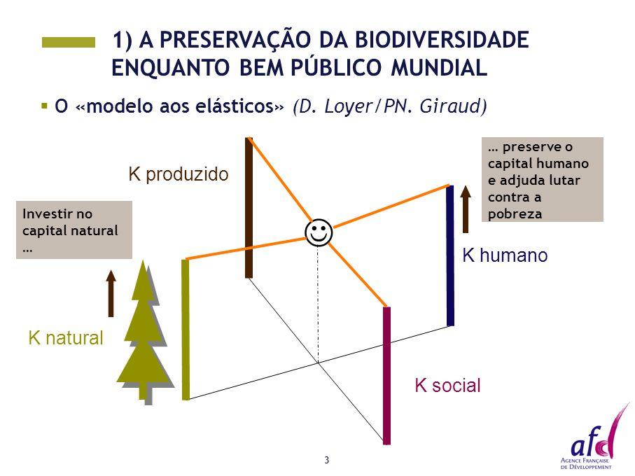 3  O «modelo aos elásticos» (D. Loyer/PN. Giraud) K social K humano K natural Investir no capital natural … … preserve o capital humano e adjuda luta
