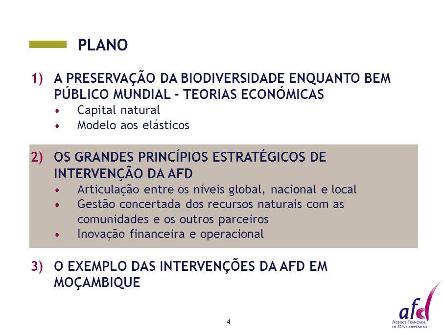 PLANO 1)A PRESERVAÇÃO DA BIODIVERSIDADE ENQUANTO BEM PÚBLICO MUNDIAL – TEORIAS ECONÓMICAS Capital natural Modelo aos elásticos 2)OS GRANDES PRINCÍPIOS ESTRATÉGICOS DE INTERVENÇÃO DA AFD Articulação entre os níveis global, nacional e local Gestão concertada dos recursos naturais com as comunidades e os outros parceiros Inovação financeira e operacional 3)O EXEMPLO DAS INTERVENÇÕES DA AFD EM MOÇAMBIQUE 4