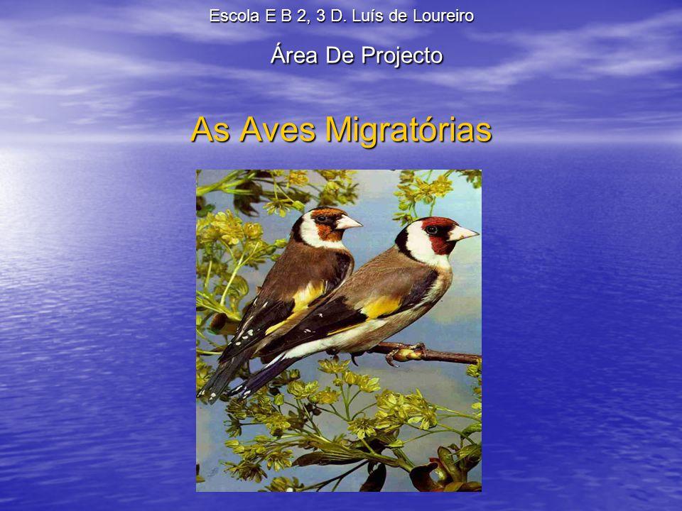Índice Introdução………………………………………………………3 As Aves Migratórias 1.