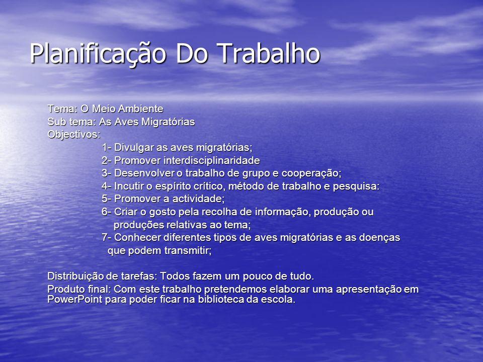 Planificação Do Trabalho Tema: O Meio Ambiente Sub tema: As Aves Migratórias Objectivos: 1- Divulgar as aves migratórias; 1- Divulgar as aves migratórias; 2- Promover interdisciplinaridade 2- Promover interdisciplinaridade 3- Desenvolver o trabalho de grupo e cooperação; 3- Desenvolver o trabalho de grupo e cooperação; 4- Incutir o espírito crítico, método de trabalho e pesquisa: 4- Incutir o espírito crítico, método de trabalho e pesquisa: 5- Promover a actividade; 5- Promover a actividade; 6- Criar o gosto pela recolha de informação, produção ou 6- Criar o gosto pela recolha de informação, produção ou produções relativas ao tema; produções relativas ao tema; 7- Conhecer diferentes tipos de aves migratórias e as doenças 7- Conhecer diferentes tipos de aves migratórias e as doenças que podem transmitir; que podem transmitir; Distribuição de tarefas: Todos fazem um pouco de tudo.