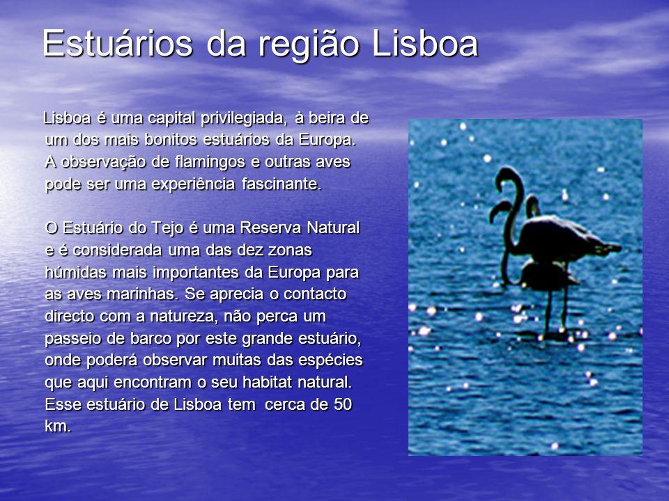 Estuários da região Lisboa Lisboa é uma capital privilegiada, à beira de um dos mais bonitos estuários da Europa.