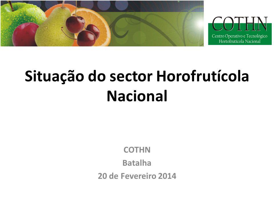 Situação do sector Horofrutícola Nacional COTHN Batalha 20 de Fevereiro 2014