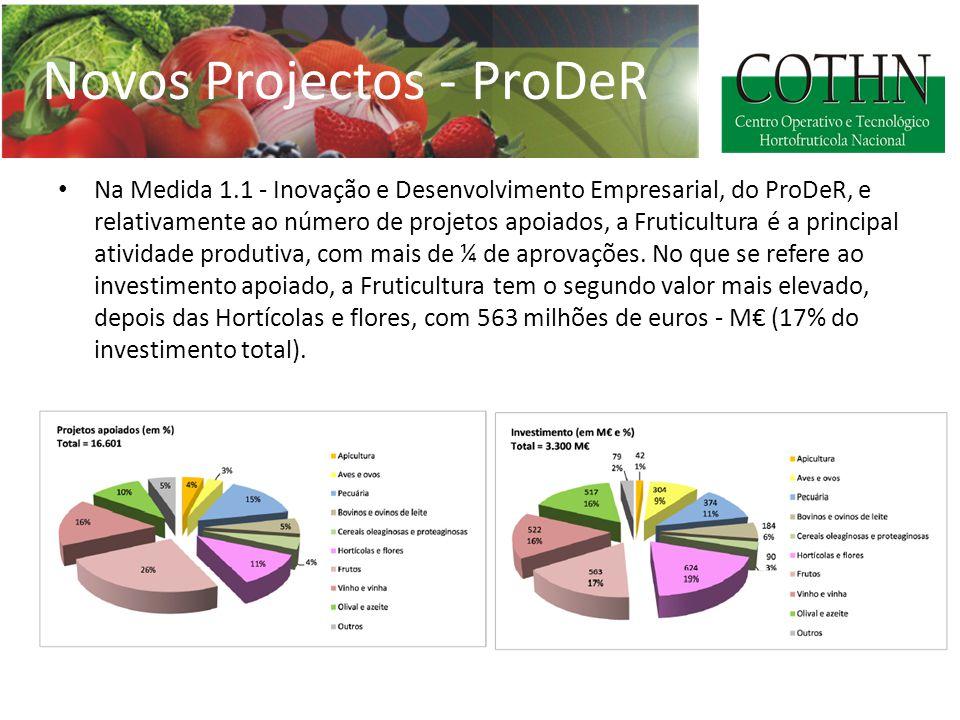 Novos Projectos - ProDeR Na Medida 1.1 - Inovação e Desenvolvimento Empresarial, do ProDeR, e relativamente ao número de projetos apoiados, a Fruticultura é a principal atividade produtiva, com mais de ¼ de aprovações.