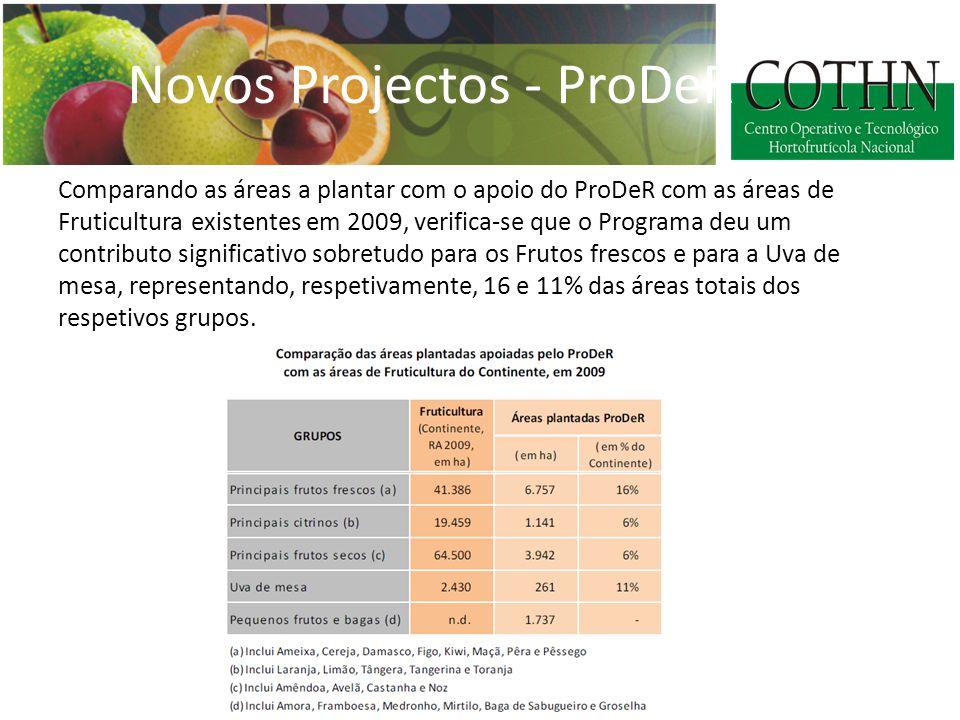 Comparando as áreas a plantar com o apoio do ProDeR com as áreas de Fruticultura existentes em 2009, verifica-se que o Programa deu um contributo significativo sobretudo para os Frutos frescos e para a Uva de mesa, representando, respetivamente, 16 e 11% das áreas totais dos respetivos grupos.