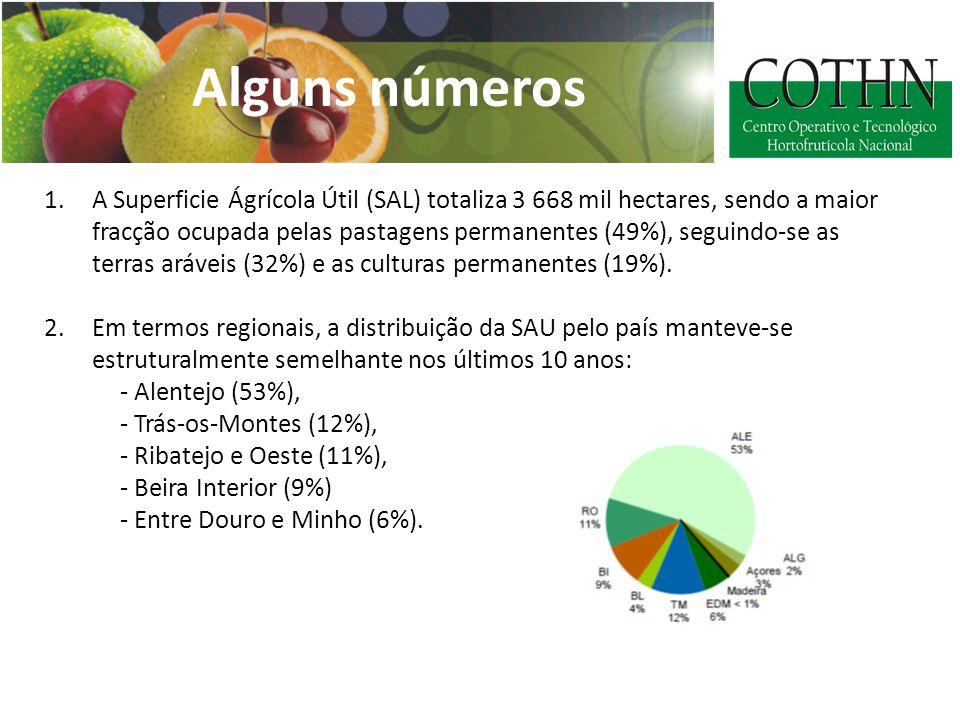 Alguns números 1.A Superficie Ágrícola Útil (SAL) totaliza 3 668 mil hectares, sendo a maior fracção ocupada pelas pastagens permanentes (49%), seguindo-se as terras aráveis (32%) e as culturas permanentes (19%).