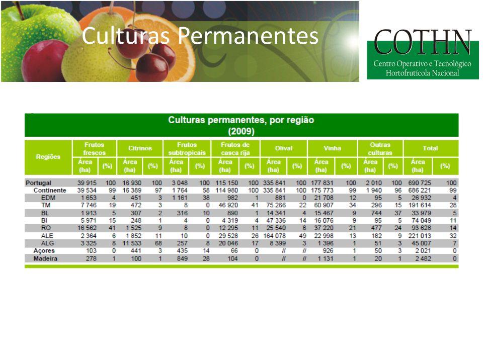 Culturas Permanentes