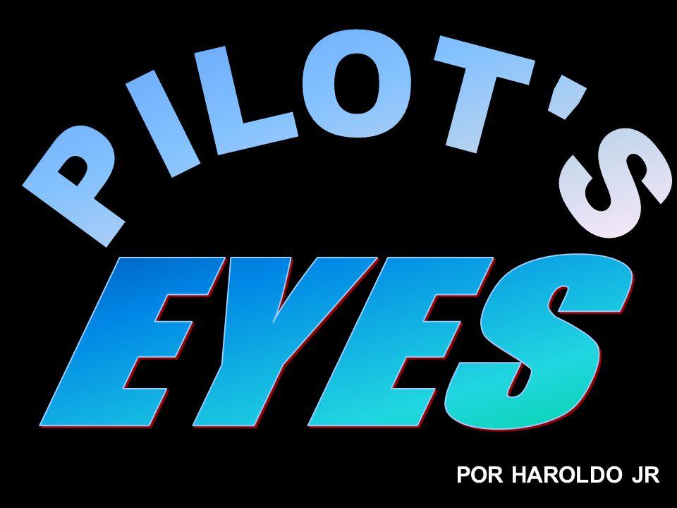 POR HAROLDO JR