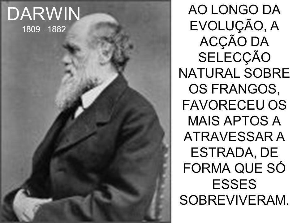 DARWIN 1809 - 1882 AO LONGO DA EVOLUÇÃO, A ACÇÃO DA SELECÇÃO NATURAL SOBRE OS FRANGOS, FAVORECEU OS MAIS APTOS A ATRAVESSAR A ESTRADA, DE FORMA QUE SÓ ESSES SOBREVIVERAM.