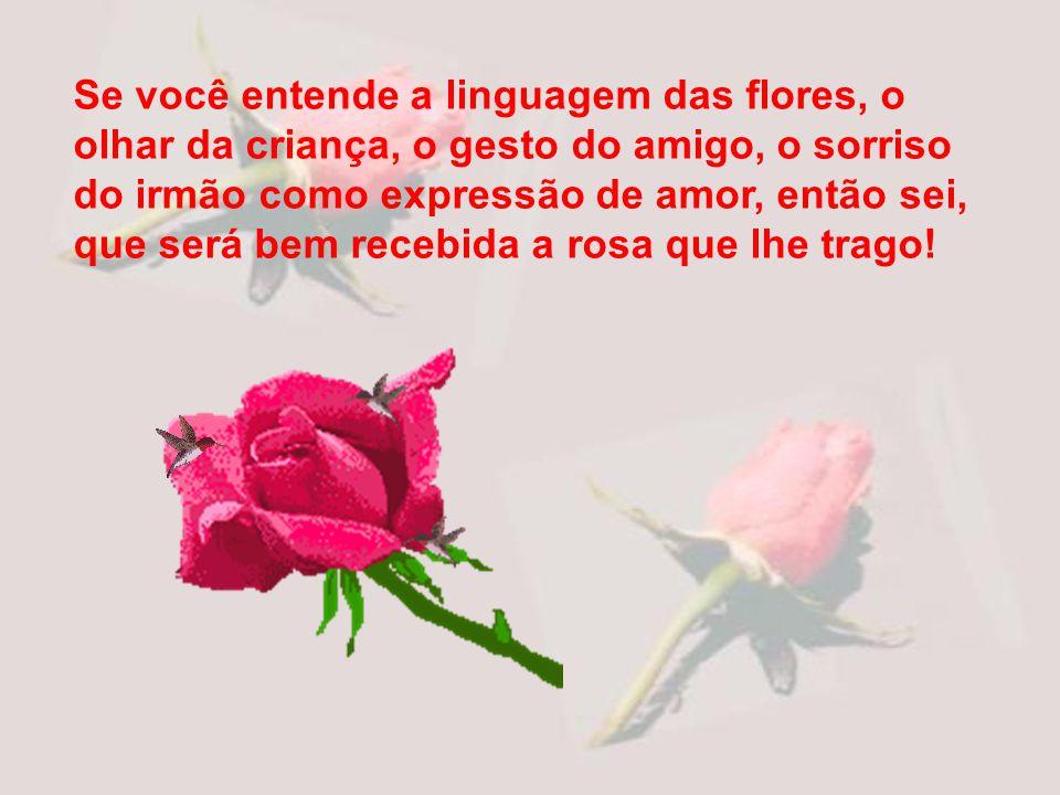 Por isso não me constrange em lhe oferecer uma rosa. Dirijo-me a você que tem alma simples ou deseja possuir a simplicidade.