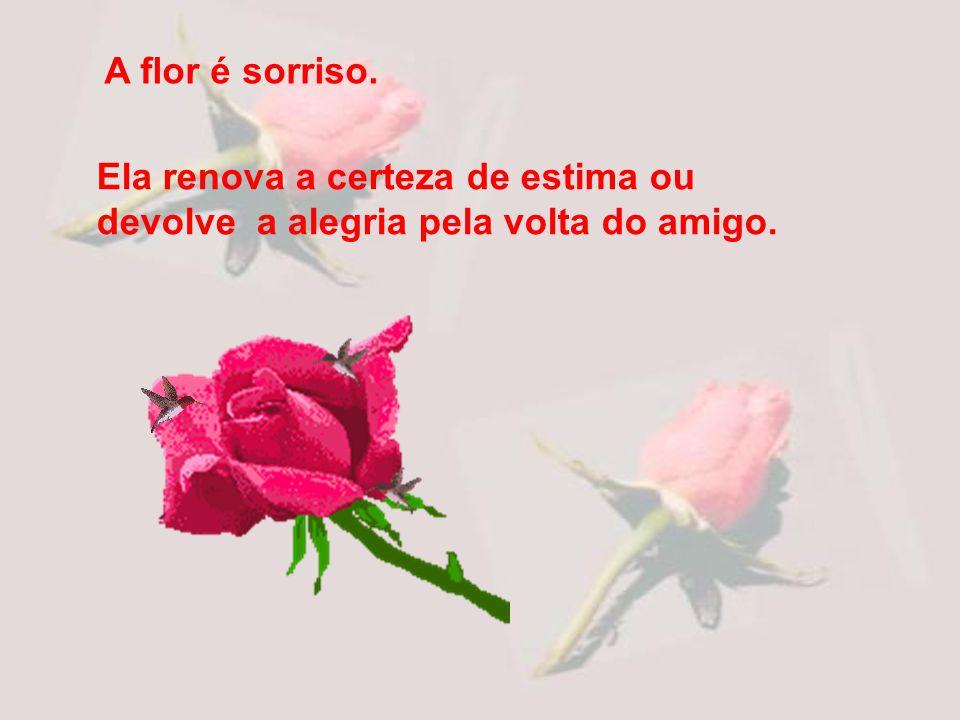 Ela renova a certeza de estima ou devolve a alegria pela volta do amigo. A flor é sorriso.