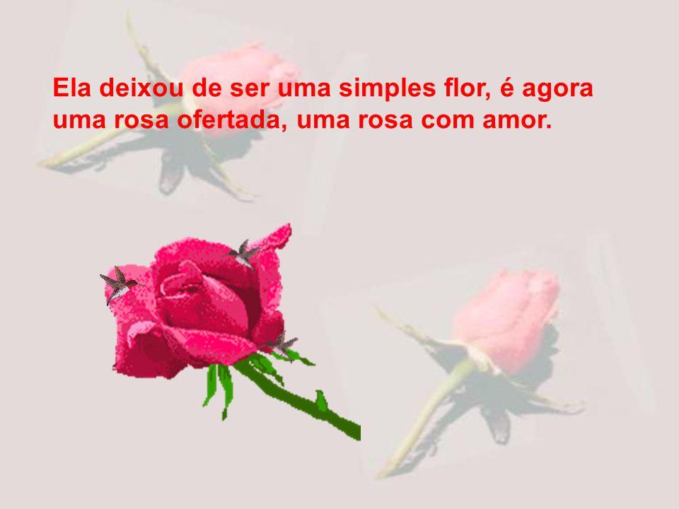 Ela fica no lugar de quem parte. A flor é a presença. Lembra seu amor, seu olhar, sua voz, lembra enfim, a pessoa que a ofertou.